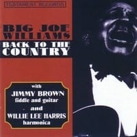 BIG JOE WILLIAMS - BACK TO THE COUNTRY  1