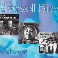 silverwolf-1024